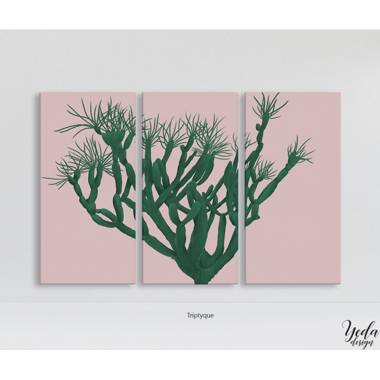 Tableau Illustration Cactus fond rose