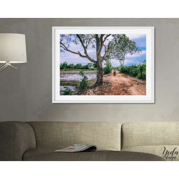 Photo cadre Campagne Cambodge, nature, paysage, panoramique